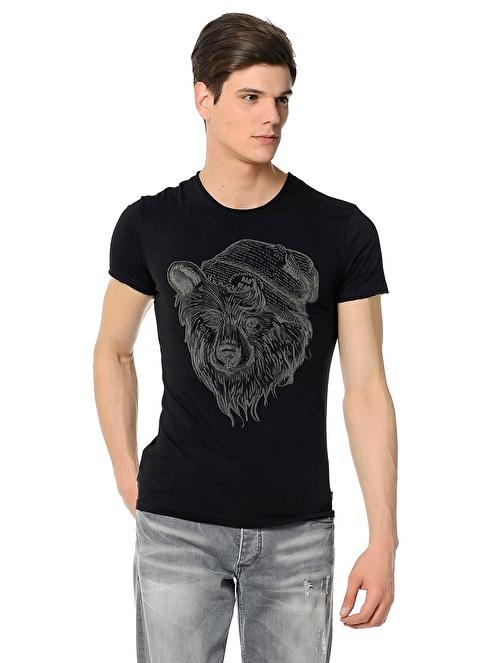 Bad Bear Baskılı Tişört  Renkli